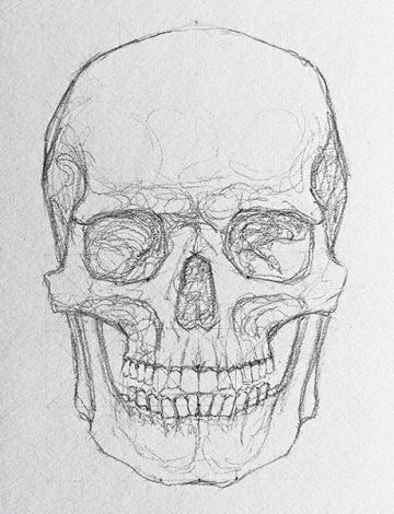 A drawing of a skull.